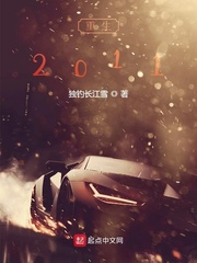 重生2011
